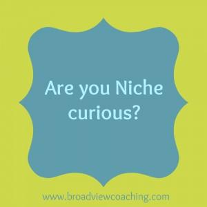 Niche curious BC